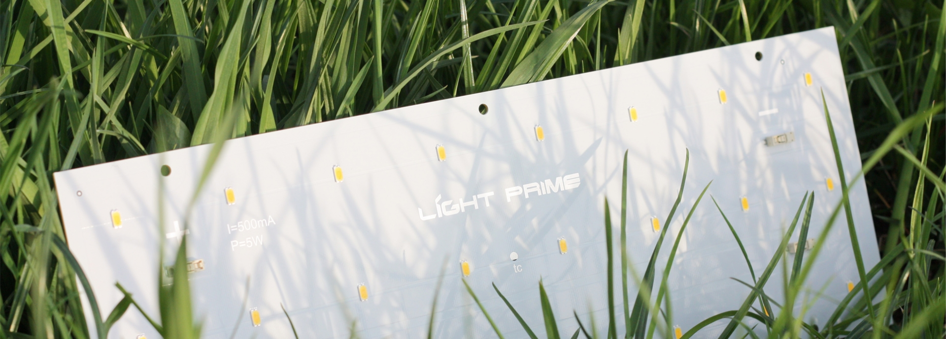 Лайт прайм Light prime